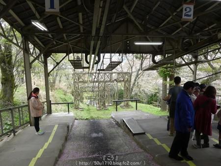160410-吉野山 (75)