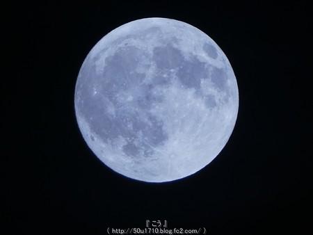 160916-お月さん (26)