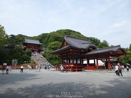 160606-鶴岡八幡宮 (10)
