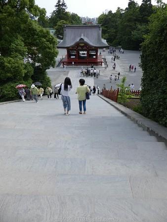 160606-鶴岡八幡宮 (25)