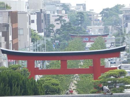 160606-鶴岡八幡宮 (26)