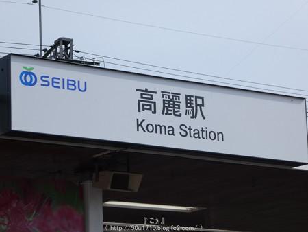 160926-高麗駅→巾着田 (5)
