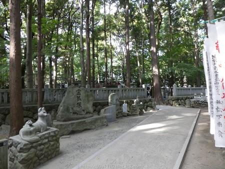 161016-豊川稲荷 (53)