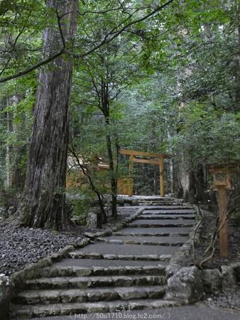 161017-瀧原宮 (33)