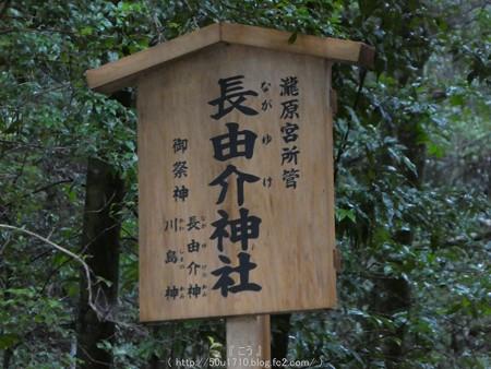 161017-瀧原宮 (38)
