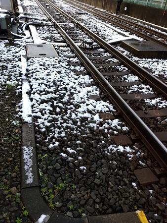 161124-雪 (28)