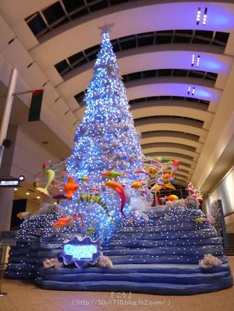 161205-クイーンズスクエア クリスマスツリー (17)