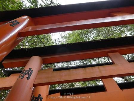 161229-伏見稲荷 (48)