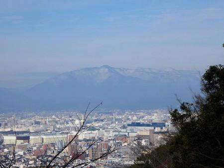 161229-伏見稲荷 (189)
