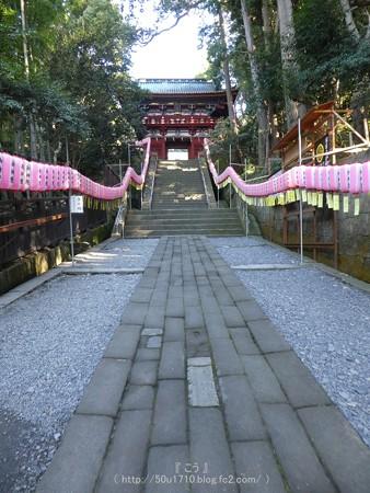 170110-久能山東照宮 (68)