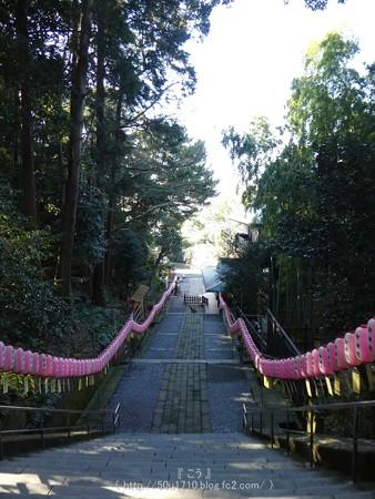 170110-久能山東照宮 (76)