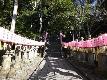 170110-久能山東照宮 (149)