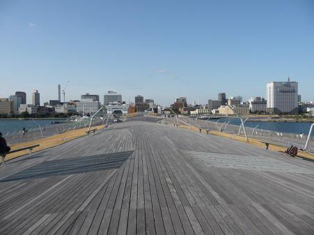 100322-大桟橋 客船2隻 (8)
