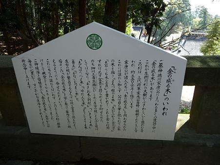 100403-久能山東照宮 (23)