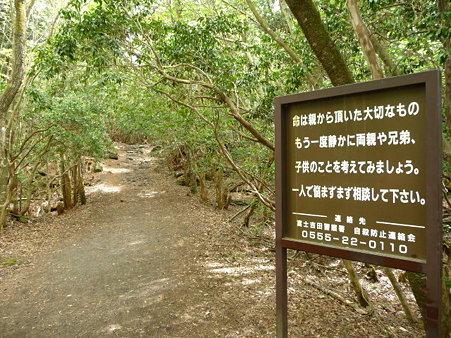 100518-青木ヶ原樹海-28