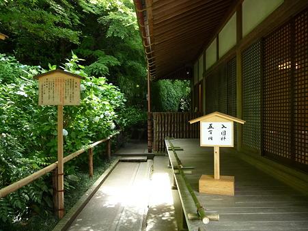 100615-明月院裏庭園