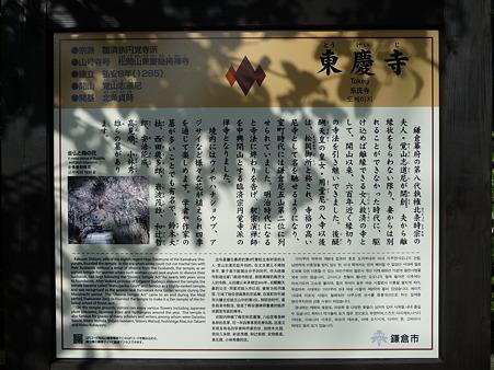 110225-東慶寺  (2)