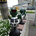 写真: DSC02769 道沿いに「無事カエル」