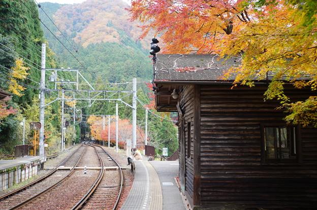 二ノ瀬駅の紅葉_4