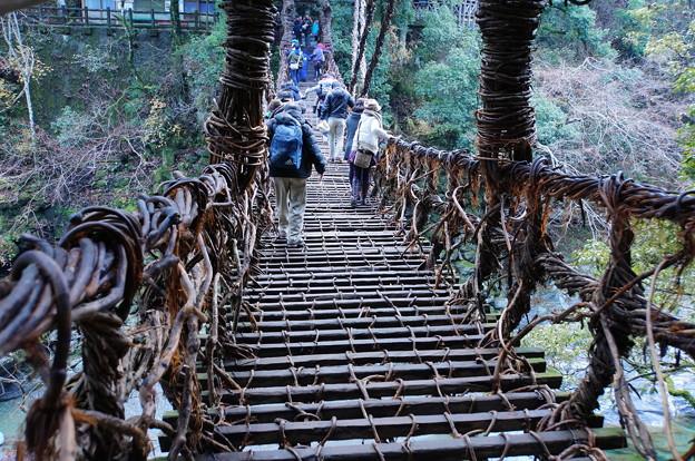 祖谷のかずら橋_3