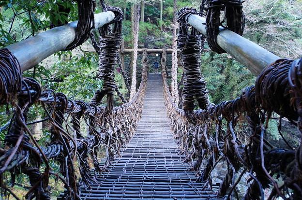 祖谷のかずら橋_5