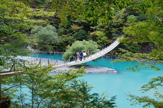 寸又峡・夢の吊橋_5