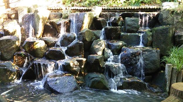 玉川上水、蘇る水
