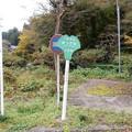 Photos: 小津川上流端