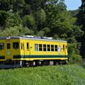 いすみ鉄道 普通列車9D (いすみ352)