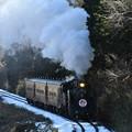 真岡鐵道 SL列車上り (C11325)