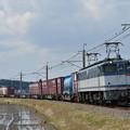 写真: 貨物列車 (EF652092)
