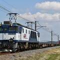 貨物列車 (EF641025)