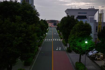 朝5:30大さん橋