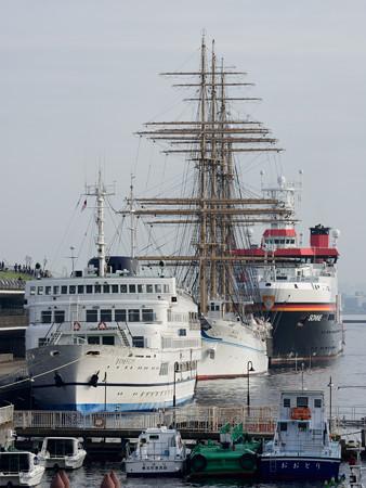 レストラン船、帆船、調査船 -1