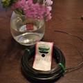 写真: ワイヤー花留めを自作してみる