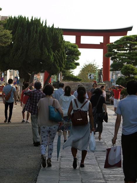 Photos: 鶴岡八幡宮参道