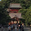 鶴岡八幡宮社殿20160907