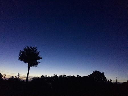 空の顔82001