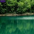 菅沼の湖面へ反映