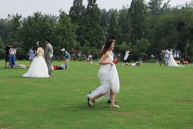 花嫁さんがいっぱい