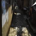 Photos: 石畳