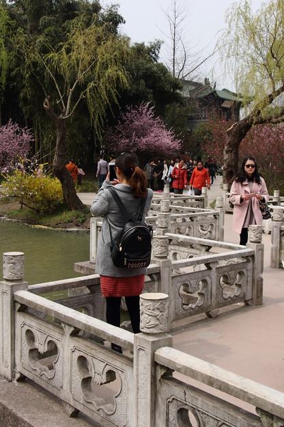 Photos: 揚州4 石八橋