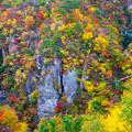 錦秋の鳴子峡