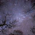 写真: 秋の星空