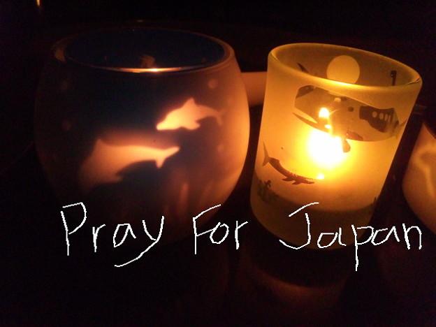 @WWFJapan 【Ea...