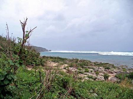 大度浜海岸(2)