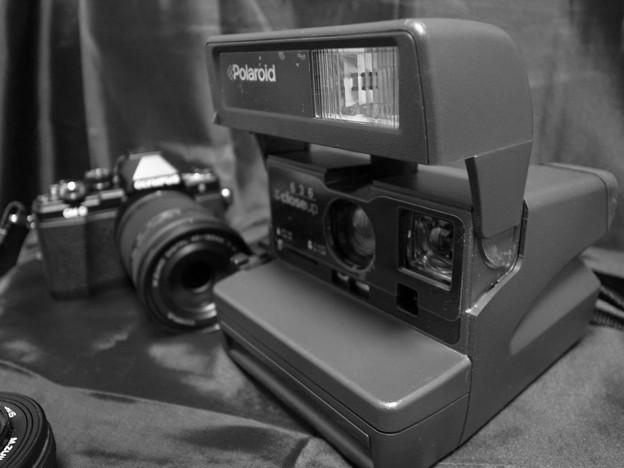 私のカメラ・・?