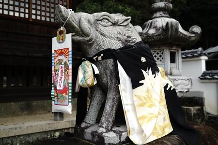 鳥取県ドライブ (35)