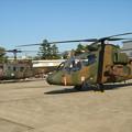 Photos: UH-1JとOH-1 DSC02403