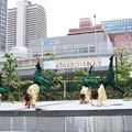 Photos: 大阪大会2016 紀道20